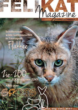 Felikat Magazine September 2018